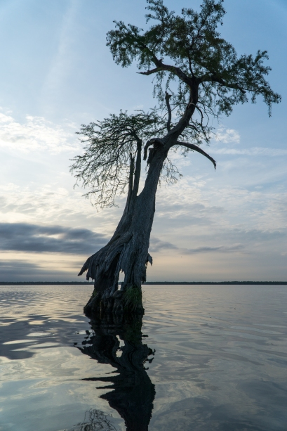 Kayak camping at Dismal Swamp