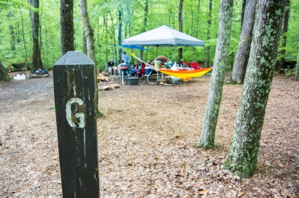 Camping at Prince William Forest State Park with the DC Hiking & Backpacking Club